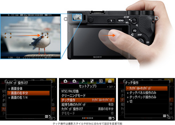 y_ILCE-6500_touch-pad.jpg